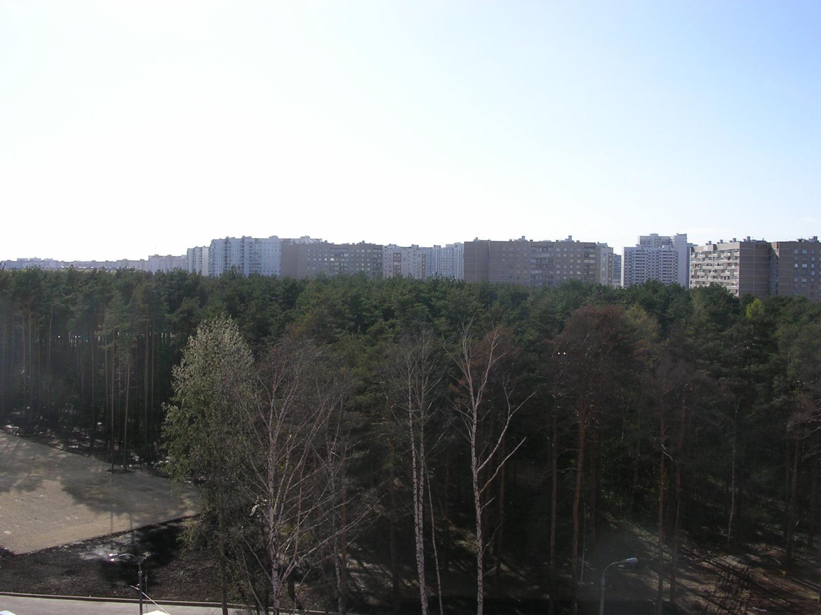 Вид на Новокосино