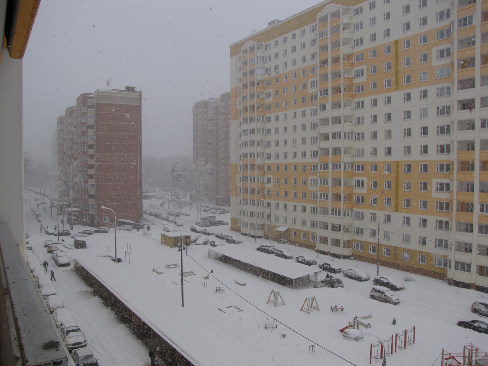 Снег идёт_3_15.01.2009.jpg