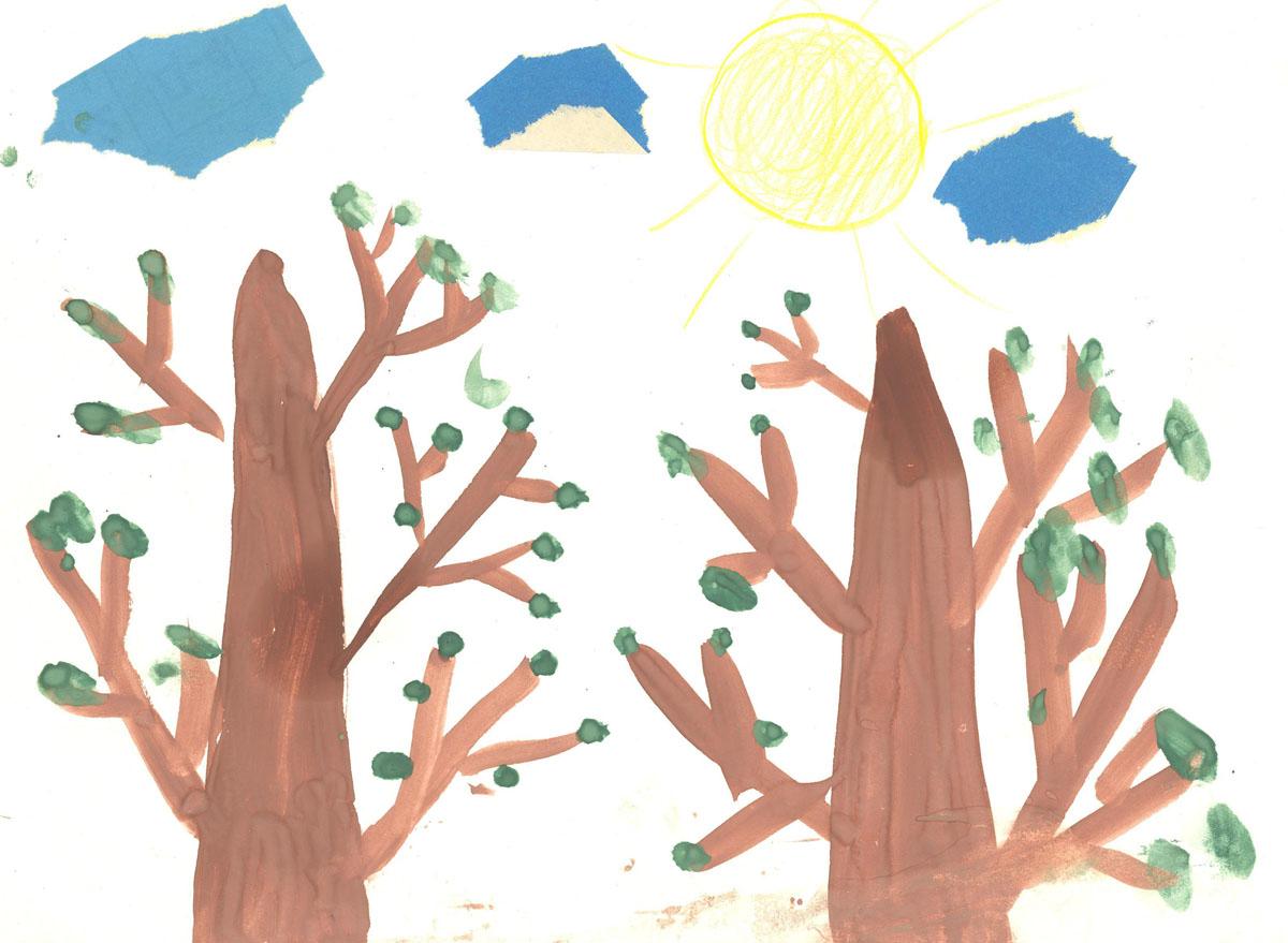 Весенний лес, первая зелень