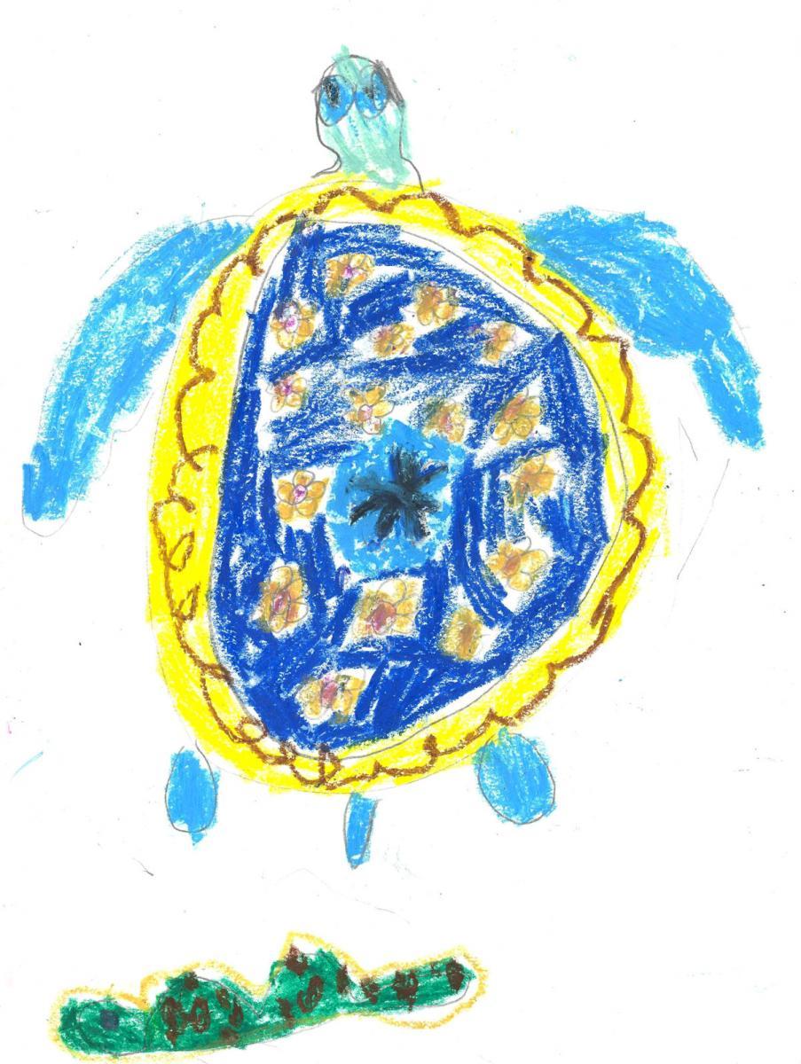 Большааая синея черепаха!